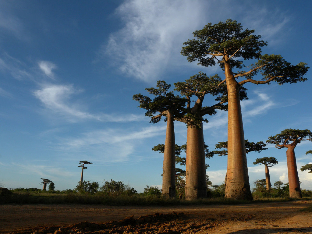 Best Places To Stay In Madagascar